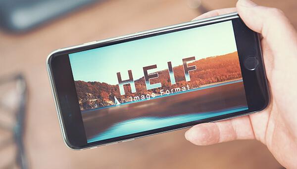 HEIF or JPG